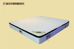 乳胶床垫L003